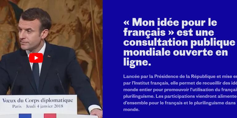Capture d'écran du site« Mon idée pour le français».