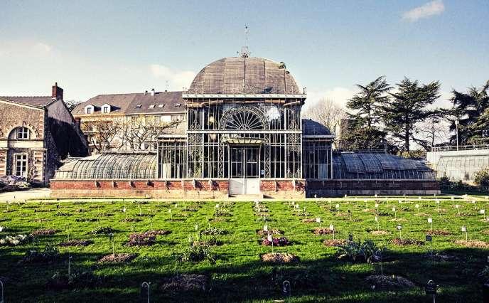 Le Jardin des plantes.