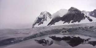 Posée sur le dos d'une baleine, une caméra montre son comportement sous-marin