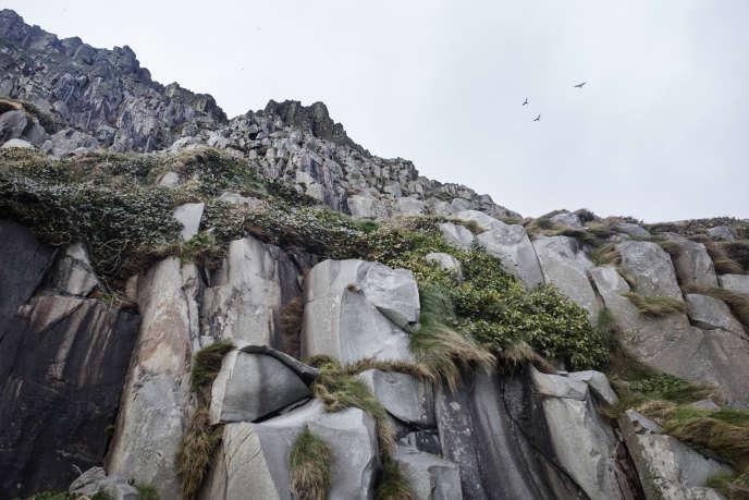 Des falaises de granit, sur l'île d'Aisla Craig, en Écosse, le 8 février.