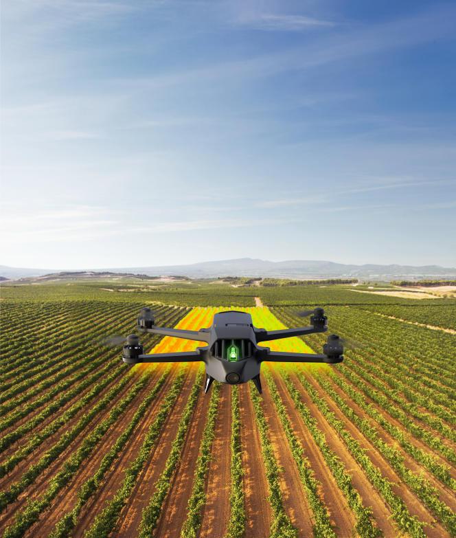 Des vignobles de La Rioja, en Espagne, tels que les perçoit le Bluegrass