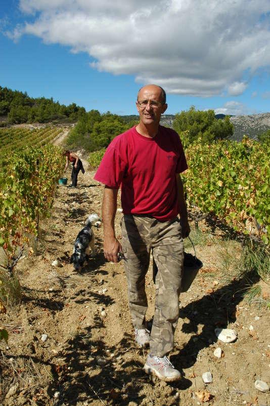 Joël Jacquet dans ses vignes.