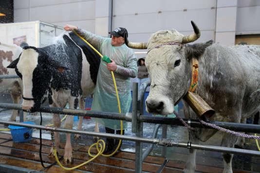 N gociations sur les prix la fili re laiti re se reprend - Prix de l entree du salon de l agriculture ...