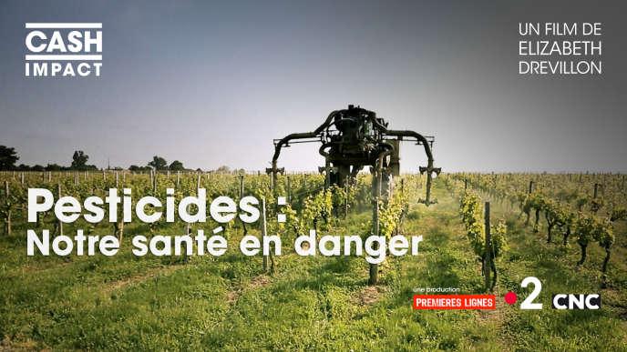 «Pesticides: notre santé en danger», d'Elizabeth Drevillon