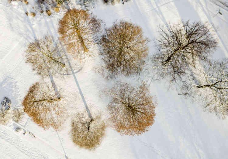Un parc recouvert de neige, à Hambourg, en Allemagne, le lundi 26 février.