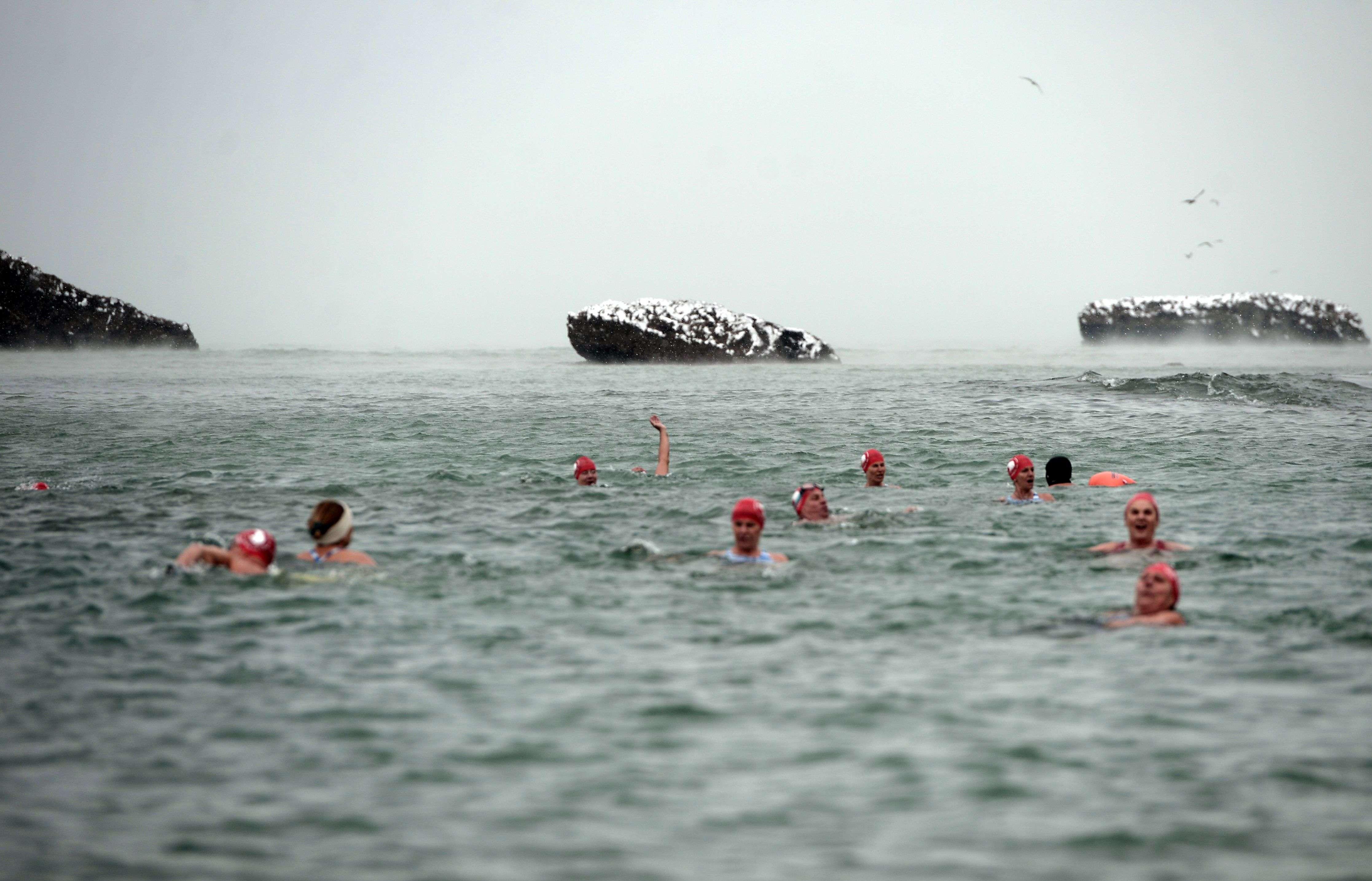 Des membres de l'association des Ours blancs nagent dans l'océan, le 28 février, à Biarritz.