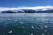 Des blocs de glace se détachent dans l'Antartique, le 1er février 2018.