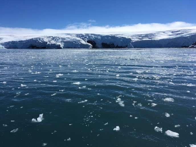 Le glacier Collins dans l'Antarctique.