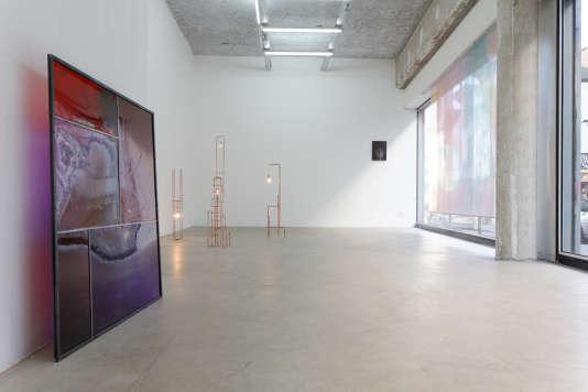 « Appassionata, Acte 2 », d'Emmanuel Lagarrigue à la galerie Sultana (Paris 20e).