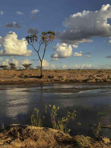 Dans la réserve nationale de Samburu, dans la province de Rift Valley, au Kenya.