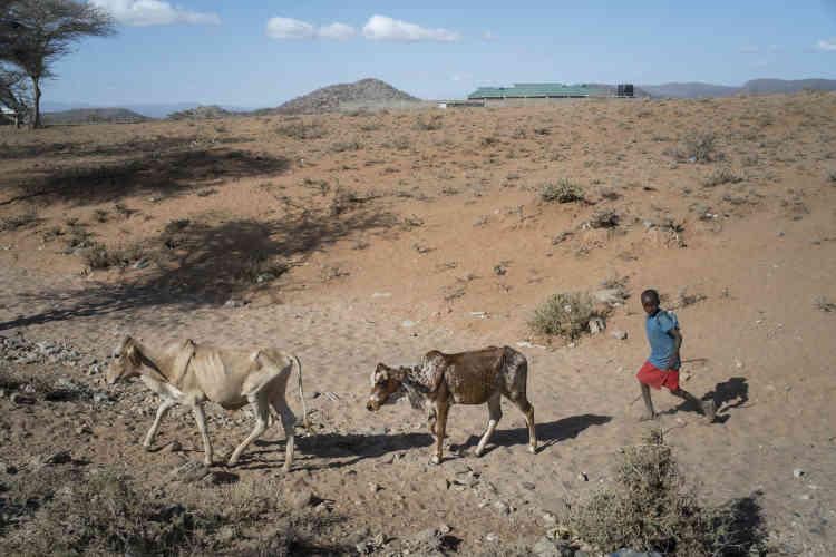 Une dizaine d'hommes sont autorisés à vivre aux alentours du village de Mopukori, principalement des fils de résidentes devenus adultes qui assurent leur sécurité et protègent le bétail. Les pères sont autorisés à venir voir leurs enfants, les «petits amis» à rendre visite, parfois à rester dormir. La règle est stricte : seules les femmes décident qui a droit de cité.