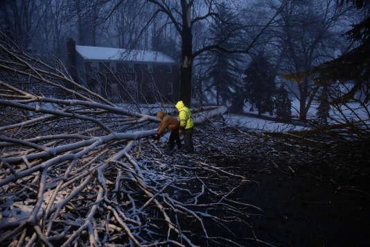 Le nord-est des Etats-Unis est touché par une tempête. La chute d'arbres a fait plusieurs morts, le 2 mars.
