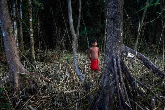 Un enfant Waiapi dans l'Etat de l'Amapa, dans le nord du Brésil, en octobre 2017.