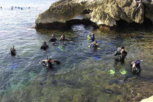 Plongée en apnée dans la calanque de Niolon.