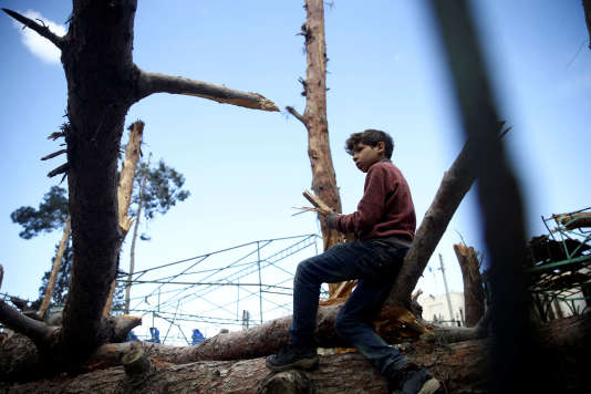 Un enfant collecte du bois dans les ruines de Douma, en Ghouta orientale, le 9 mars.