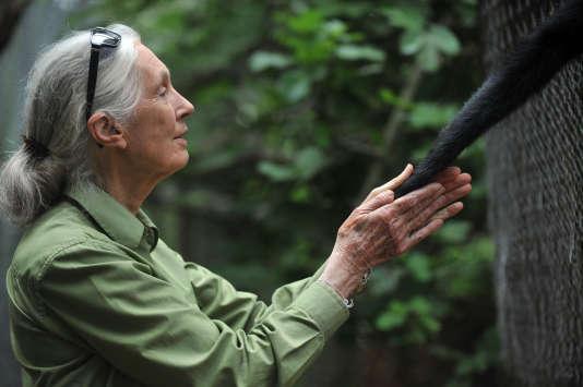 Jane Goodall au centre de Peñaflor.