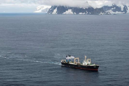 Un navire en train de pêcher le krill aux environs de l'île Trinity.