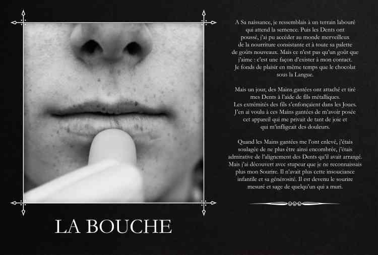 «Cette œuvre mêle des images et des mots, comme une histoire qui se raconterait en silence », expliquePeggy Calvez-Allaire, directrice de la manifestation.