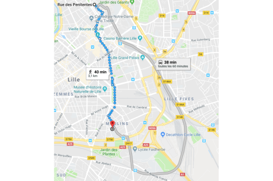 L'itinéraire conseillé à Lille (en bleu) évite le métro alors que celui-ci est équipé d'ascenseurs.