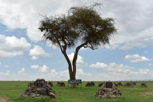 Tombes de rhinocéros dans le parc d'Ol-Pejeta, au Kenya, le 20 mars.