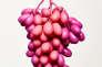 Le rosé tavel, plus fort en couleur !