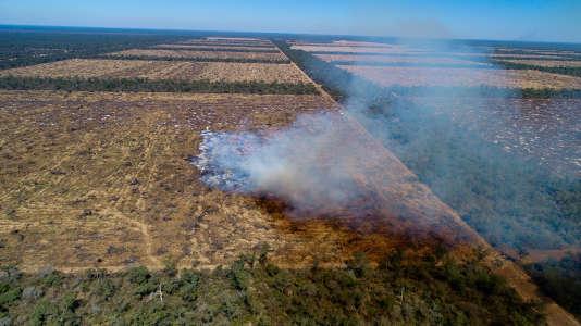 Déforestation par le feu en Argentine, en août2017.