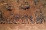 Arbres arrachés illégalement en Argentine.