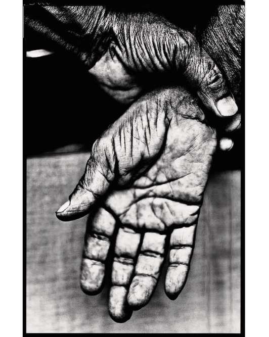 « Cette photo a été prise par un ami, Arnaud Mouillevois. Elle fait un mètre sur deux. On y voit toutes les lignes de la paume. Elle me procure une très forte émotion. J'aime les mains, ce qu'elles racontent, elles sont un fil rouge dans ma vie. Ce n'est pas un hasard si je suis dans une maison où le toucher et le travail manuel sont très importants.»