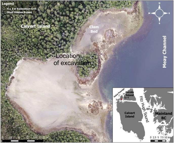 Photographie aérienne des lieux de fouille, sur l'île de Calvert, en Colombie-Britannique.