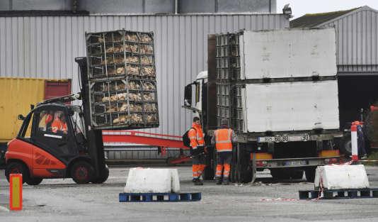 Le volailler Doux devrait être placé en liquidation judiciaire par le tribunal de commerce de Rennes, mercredi 4 avril.