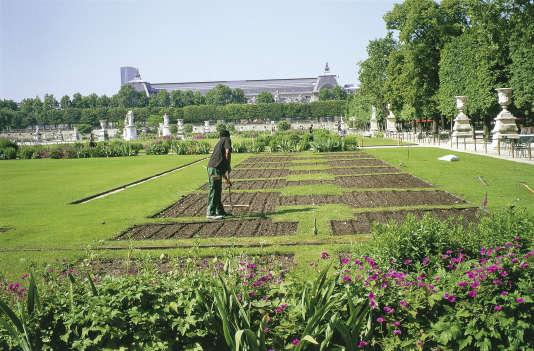 Dans le jardin des Tuileries, à Paris.