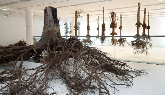 L'appareil racinaire d'un noyer, déployé dans une salle de l'exposition«Les racines ont des feuilles» (2008), à l'Espace Electra, à Paris.