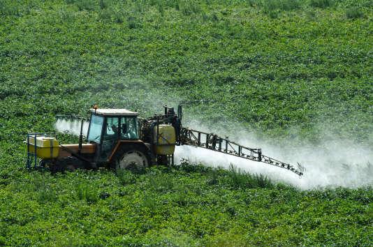 Les excellentes récoltes de céréales, de maïs et de soja à travers le monde depuis plus de quatre ans ont fait chuter les cours