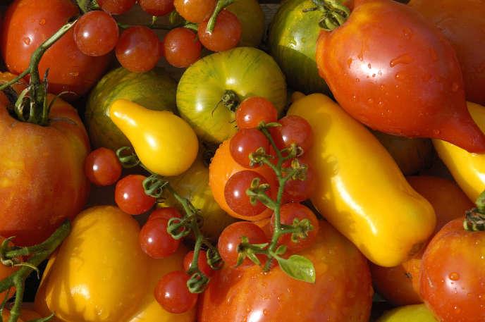 Il y a plusieurs façons de définir les fruits et les légumes.