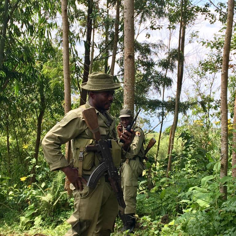 Des rangers du parc des Virunga, dans l'est de la République démocratique du Congo, en avril 2018.
