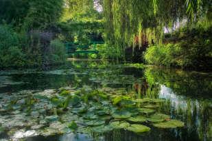 Le pont japonais recouvert de la glycine plantée par Monet lui-même, le saule pleureur et les nymphéas recréent pour le visiteur de Giverny le décor familier des plus célèbres toiles du peintre.