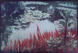 Cette œuvre de Bernard Plossu faisait partie de l'exposition « Photographier les jardins de Monet. Cinq regards contemporains», qui s'est tenue en 2015 au Musée des impressionnismes de Giverny. Elle figure dans le catalogue coédité pour l'occasion avec les Editions Filigranes(112p., 29€).