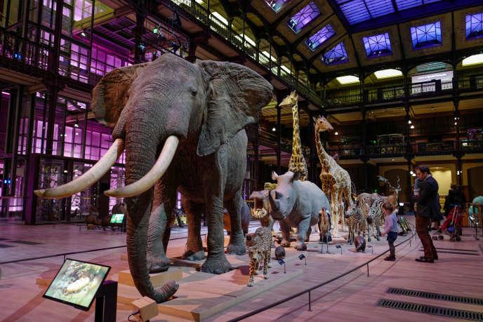 La «Caravane Africaine» au Muséum national d'Histoire naturelle de Paris, le 14 mars.