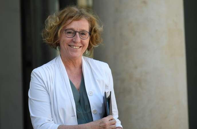 « Le CIF ne sera plus un dispositif d'émancipation personnelle et professionnelle des salariés, mais un outil supplémentaire de gestion de la main-d'œuvre pour les employeurs» (La ministre du travail Muriel Pénicaud le 20 avril à l'Elysée).