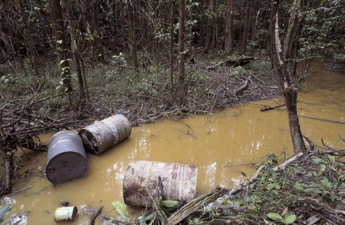 « Que dire du processus prévu d'extraction de l'or par l'utilisation du cyanure, en pleine forêt amazonienne ? La lecture du rapport du Bureau de recherches géologiques et minières consacré à ce sujet fait frémir » (Fûts de produits toxiques sur un site d'orpaillage illégal).