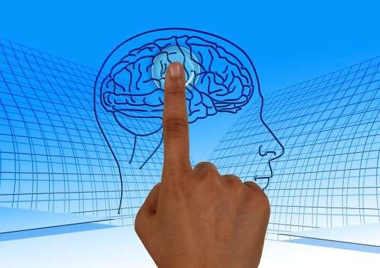 «Le cognitivisme n'est pas sans arrière-pensée, puisqu'il part du postulat que la pensée peut se réduire au traitement d'informations et que l'imagerie cérébrale permet de constater empiriquement son fonctionnement. »