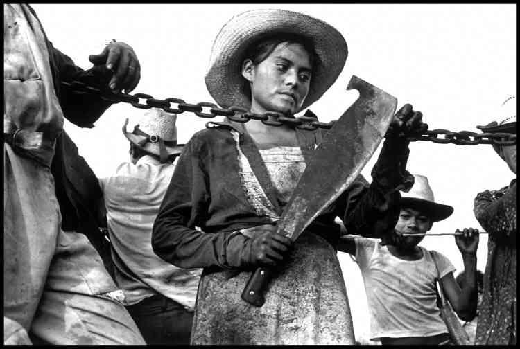 Larry Towell :«Cette photo a été prise dans les années 80. Abbas aimait le Mexique comme j'aimais l'Amérique centrale. Les gens étaient hors du temps. Leur lutte pour la justice était sans fin. Il semblait qu'ils n'arriveraient jamais à atteindre leur but. Cet enfant coupe des cannes à sucre, destiné à répéter le cycle de pauvreté de ses parents. Les photos d'Abbas parlaient du monde extérieur, pas de lui. Il m'a aidé à éditer mon livre sur le Salvador à l'époque. On avait éparpillé toutes les photos sur le sol de son appartement et on les réorganisait jusqu'à ce qu'elles aient du sens.»
