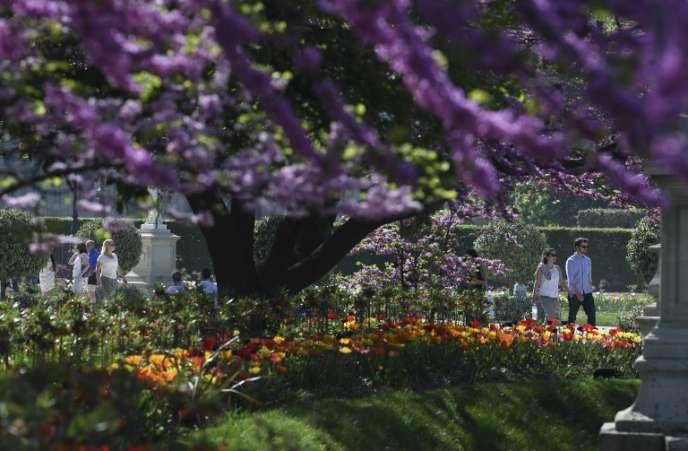 """«Michel Berry, ex-directeur du centre de recherche en gestion de l'Ecole polytechnique, vient de créer le Jardin des entreprenants, un site dans lequel il a déjà virtuellement planté 300 initiatives parmi celles """"qui fleurissent aujourd'hui"""" » (Photo: jardin des tuileries, à Paris)."""