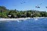 La plage de Montezuma.
