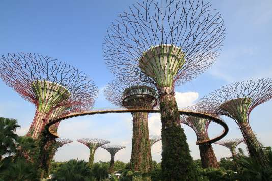 Les impressionnants arbres artificiels de Gardens by the bay, à Singapour.