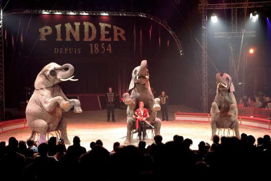 Un dresseur dirige des éléphants lors d'un numéro de cirque, le 27 décembre 2005 sous le chapiteau du Cirque Pinder Jean-Richard à Paris.