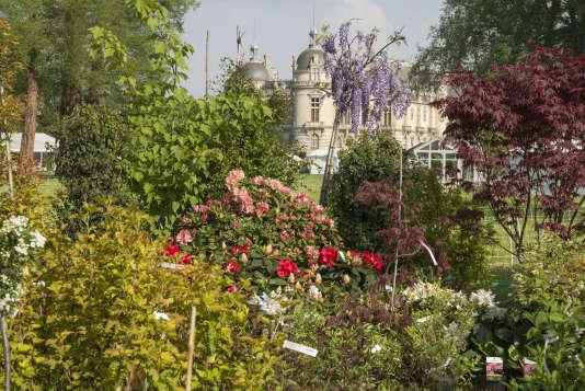 Les journées des plantes, à Chantilly, sont un véritable «Festival de Cannes des pépiniéristes ».