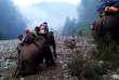Birmanie : des civils fuient les combats à dos d'éléphants