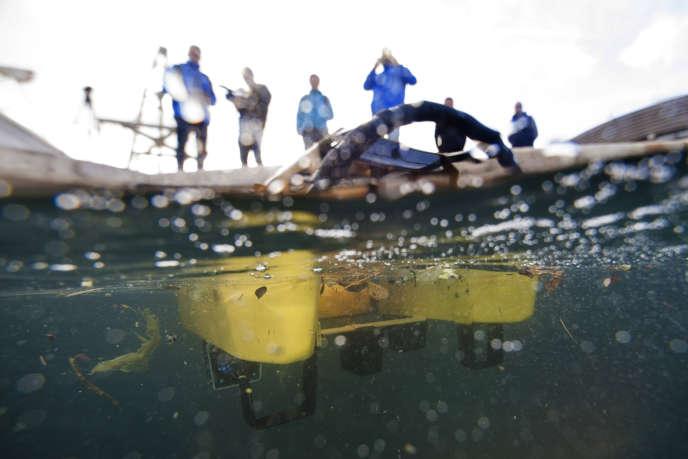 Un robot sous-marin collecte des déchets flottants dans le port de Cassis le 18 janvier. Télécommandé, le prototype «jellyfishbot» sera prochainement équipé d'un laser pour détecter «les obstacles et collecter les déchets de manière autonome» selon Nicolas Carlesi , l'un des créateurs et doctorant en robotique et en intelligence artificielle.
