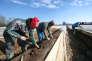 PrèsdeStephansposching, en Allemagne, en mars. De nombreux roumains travaillent dans le secteur de l'agriculture outre-Rhin.